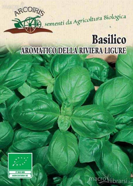 Semi di Basilico Aromatico della Riviera Ligure