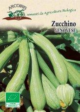 Semi di Zucchino Genovese